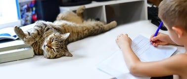 Το αγόρι με τη γάτα του στοκ φωτογραφία με δικαίωμα ελεύθερης χρήσης