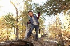 Το αγόρι σε ένα δάσος κοιτάζει στη κάμερα και περπατά κατά μήκος του πεσμένου δέντρου στοκ εικόνες