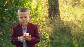 Το αγόρι τρώει ένα μήλο απόθεμα βίντεο