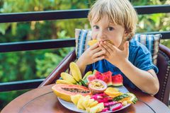 Το αγόρι τρώει τα διαφορετικά φρούτα στο πεζούλι στοκ φωτογραφία με δικαίωμα ελεύθερης χρήσης
