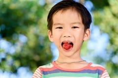Το αγόρι τρώει τη φράουλα Στοκ φωτογραφία με δικαίωμα ελεύθερης χρήσης
