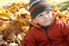 Το αγόρι φεύγει το φθινόπωρο Στοκ Φωτογραφία