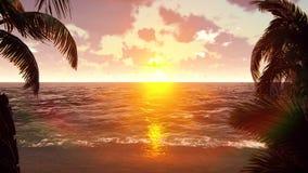 Το αεροπλάνο πετά πέρα από ένα τροπικό νησί στο υπόβαθρο ενός όμορφου ηλιοβασιλέματος απόθεμα βίντεο