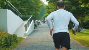 Το αθλητικό άτομο runnig κατά μήκος του πάρκου μια ηλιόλουστη θερινή ημέρα απόθεμα βίντεο