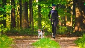 Το αθλητικό κορίτσι τρέχει με ένα λαγωνικό σκυλιών στην ηλιόλουστη ημέρα άνοιξη στη δασική πορεία στοκ εικόνες