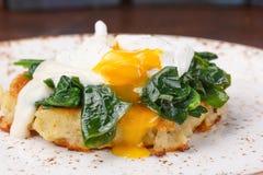 Το λαθραίο αυγό Στοκ Εικόνες