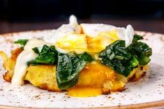 Το λαθραίο αυγό Στοκ Εικόνα