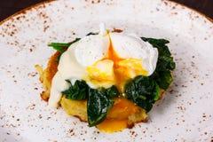 Το λαθραίο σπανάκι αυγών Στοκ Εικόνες