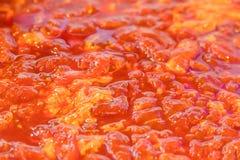 Το ακατέργαστο μαριναρισμένο χοιρινό κρέας στο πιάτο Στοκ Φωτογραφία