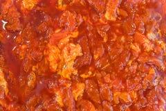Το ακατέργαστο μαριναρισμένο χοιρινό κρέας στο πιάτο Στοκ φωτογραφίες με δικαίωμα ελεύθερης χρήσης