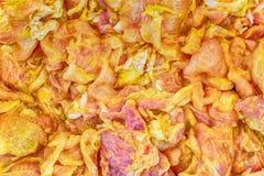 Το ακατέργαστο μαριναρισμένο χοιρινό κρέας στο πιάτο Στοκ Εικόνες