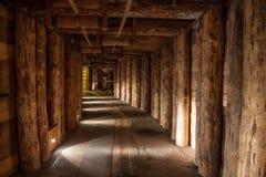 Το αλατισμένο ορυχείο Wieliczka λειτούργησε συνεχώς από το θόριο στοκ εικόνα