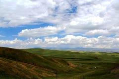 Το αλπικό τοπίο λιβαδιών στο οροπέδιο Qinghai Θιβέτ Στοκ Εικόνες