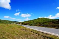 Το αλπικό τοπίο λιβαδιών στο οροπέδιο Qinghai Θιβέτ Στοκ φωτογραφίες με δικαίωμα ελεύθερης χρήσης