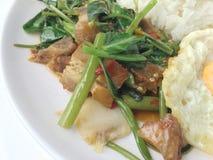 Το ανακατώνω-τηγανισμένο τριζάτο χοιρινό κρέας με το Kale και το ταϊλανδικό ύφος τηγάνισαν το αυγό στο άσπρο πιάτο στο άσπρο υπόβ στοκ εικόνες