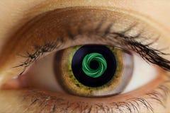 Το ανθρώπινο θηλυκό μάτι είναι ανοικτό καφέ Χρωματισμένο σχέδιο μέσα στο μαθητή, ζωτικότητα η στενή εικόνα ματιών επίδρασης υπολο Στοκ Εικόνα