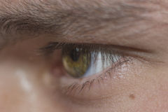 Το ανθρώπινο μάτι εξετάζει με Στοκ Φωτογραφίες