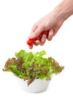 Το ανθρώπινο χέρι βάζει τις ντομάτες κερασιών στο πιάτο της πράσινης σαλάτας Στοκ εικόνα με δικαίωμα ελεύθερης χρήσης