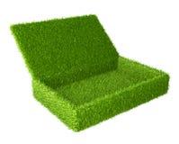 Το ανοικτό κιβώτιο κάλυψε μια πράσινη χλόη απεικόνιση αποθεμάτων