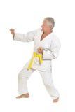 Το ανώτερο άτομο karate θέτει Στοκ Φωτογραφίες