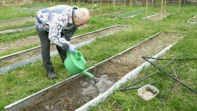 Το ανώτερο ηλικιωμένο άτομο ποτίζει έναν φυτικό κήπο κρεβατιών απόθεμα βίντεο