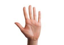 Το απομονωμένο χέρι παρουσιάζει τον αριθμό πέντε Στοκ εικόνα με δικαίωμα ελεύθερης χρήσης