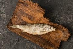 Το αποξηραμένο ψάρι βρίσκεται σε ένα σκοτεινό συγκεκριμένο υπόβαθρο Στοκ φωτογραφία με δικαίωμα ελεύθερης χρήσης