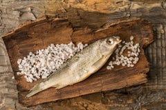 Το αποξηραμένο ψάρι βρίσκεται στο αγροτικό ξύλινο υπόβαθρο Στοκ φωτογραφίες με δικαίωμα ελεύθερης χρήσης