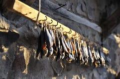 Το αποξηραμένο ψάρι στην ειδική στερέωση κρεμά κατά μήκος ενός τοίχου πετρών Στοκ Φωτογραφία