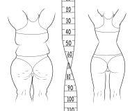 Το αποτέλεσμα πριν και μετά από μια διατροφή παχιά λεπτή γυναίκα απεικόνιση αποθεμάτων
