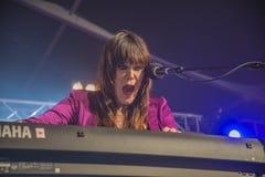 Το αρσενικό ελάφι της Beth, ΗΠΑ, το φεστιβάλ μπλε Στοκ Φωτογραφίες