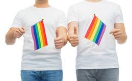 Το αρσενικό ζεύγος με την ομοφυλοφιλική παρουσίαση σημαιών υπερηφάνειας φυλλομετρεί επάνω Στοκ εικόνες με δικαίωμα ελεύθερης χρήσης