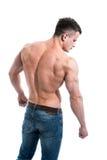 Το αρσενικό που απομονώνεται πίσω στο άσπρο υπόβαθρο στοκ εικόνες με δικαίωμα ελεύθερης χρήσης