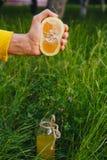 Το αρσενικό χέρι συμπιέζει το χυμό εσπεριδοειδούς σε ένα μπουκάλι της σπιτικής λεμονάδας στη χλόη στη φύση υπαίθρια κινηματογράφη στοκ εικόνες με δικαίωμα ελεύθερης χρήσης