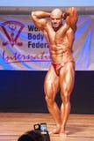 Το αρσενικό bodybuilder λυγίζει τους μυς του για να παρουσιάσει διάπλασή του Στοκ εικόνα με δικαίωμα ελεύθερης χρήσης