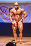 Το αρσενικό bodybuilder λυγίζει τους μυς του για να παρουσιάσει διάπλασή του Στοκ φωτογραφία με δικαίωμα ελεύθερης χρήσης