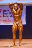 Το αρσενικό bodybuilder λυγίζει τους μυς του και παρουσιάζει καλύτερη διάπλασή του Στοκ εικόνα με δικαίωμα ελεύθερης χρήσης