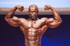Το αρσενικό bodybuilder λυγίζει τους μυς του και παρουσιάζει καλύτερη διάπλασή του Στοκ Εικόνες