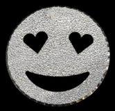το ασήμι ακτινοβολεί να λάμψει προσώπου χαμόγελου Στοκ φωτογραφίες με δικαίωμα ελεύθερης χρήσης