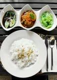 Το ασιατικά κάρρυ & τα λαχανικά που τίθενται το γεύμα Στοκ Φωτογραφίες