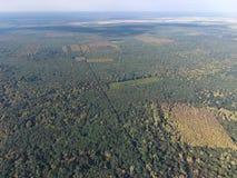 Το δασικό κόκκινο δασικό τοπίο με μια πανοραμική θέα Στοκ φωτογραφίες με δικαίωμα ελεύθερης χρήσης