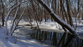 Το δασικό ρεύμα ρέει τοπίο στο χιόνι χειμερινής δασικό φύσης Στοκ εικόνα με δικαίωμα ελεύθερης χρήσης