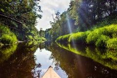 Το δασικό φως ποταμών στον ήλιο, Luchosa, Λευκορωσία Στοκ Εικόνα