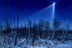 Το αστέρι Χριστουγέννων Στοκ Εικόνες