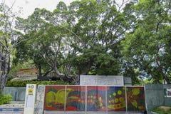 Το αστικό επίκεντρο της πόλης Kaohsiung Στοκ εικόνα με δικαίωμα ελεύθερης χρήσης