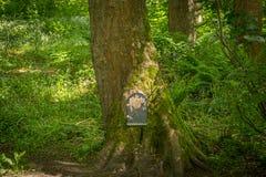 Το αστυνομικό τμήμα του Glen νεράιδων στο πόδι ενός δέντρου στο πάρκο Fullarton από Troon στη Σκωτία στοκ εικόνα με δικαίωμα ελεύθερης χρήσης