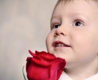 Το λατρευτό cherubic μικρό παιδί με ένα κόκκινο αυξήθηκε στοκ εικόνες με δικαίωμα ελεύθερης χρήσης