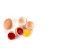 Το αυγό έσπασε την έννοια Στοκ εικόνα με δικαίωμα ελεύθερης χρήσης