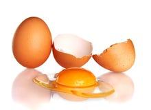 το αυγό ανασκόπησης συνέ&theta Στοκ εικόνα με δικαίωμα ελεύθερης χρήσης