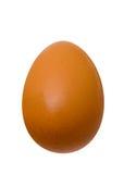 το αυγό απομόνωσε το λε&upsi Στοκ Φωτογραφία